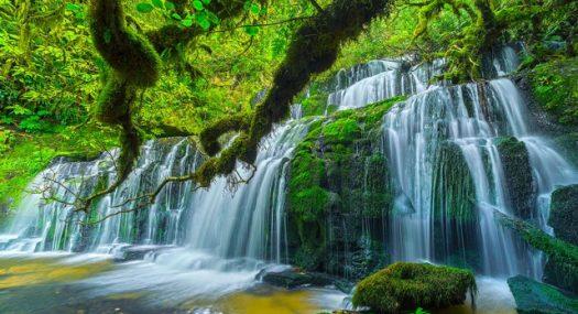 purakanui falls markgray